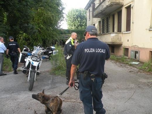 padova polizia municipale