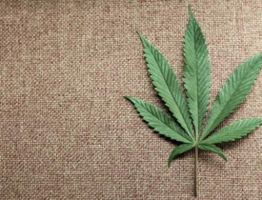 File photo of a marijuana leaf at Canna Pi medical marijuana dispensary in Seattle