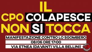 colapesce-300x169