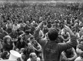 torino fiat 1980