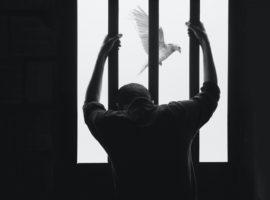 Immagine di copertina: foto di Hasan Almasi