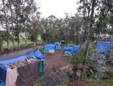 tenerife campo migranti